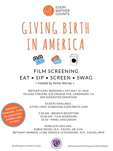 Flyer for Giving Birth in America